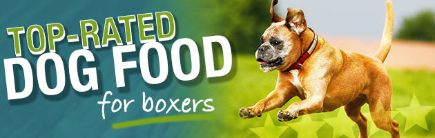 What Are The Best Dog Foods For Boxers