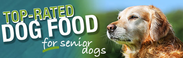 Now Fresh Senior Dog Food Reviews