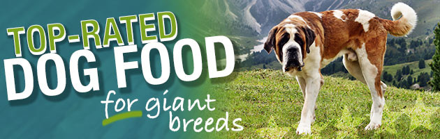 Best Dog Food For Giant Breeds