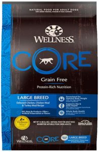 What Is The Best Dog Food for a Great Dane? | Wellness CORE Large Breed | Dogfood.guru