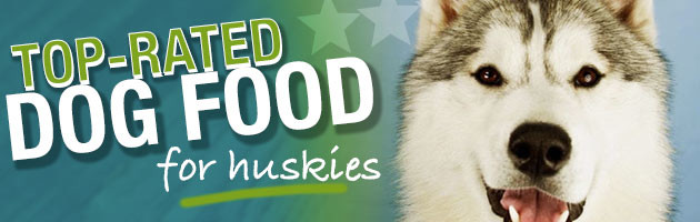 Best High Protein Dog Food For Huskies