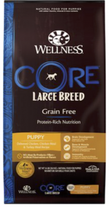 What Is The Best Dog Food for a Doberman Pinscher? | Wellness Core Large Breed | Dogfood.guru