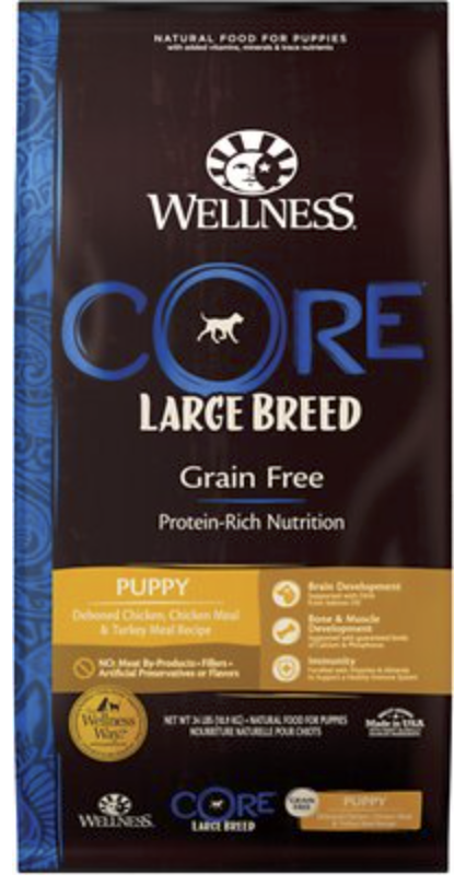 What is the Best Dog Food For a Doberman Pinscher?