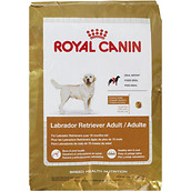 Best Dog Food For Labs >> What Is The Best Food For My Labrador
