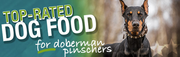 Best Dog Food For Doberman Pinschers