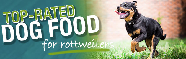 Best Dog Food For Rottweilers