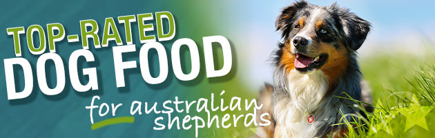 e1ead3a3e8 Best Dog Food for Australian Shepherds - Puppies, Adult & Senior Dogs