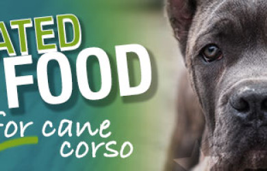 Best Dog Food For Cane Corso