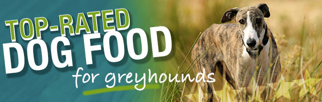 Best Dog Food For Greyhounds