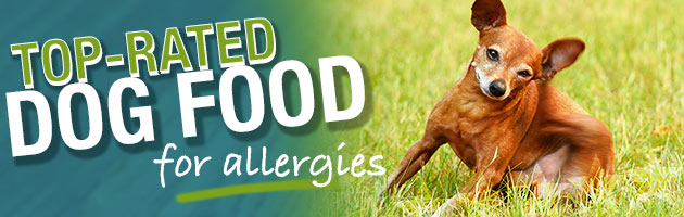 Victor Dog Food Reviews >> What is the Best Dog Food for Dogs with Allergies?