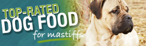Best Dog Food For Mastiffs