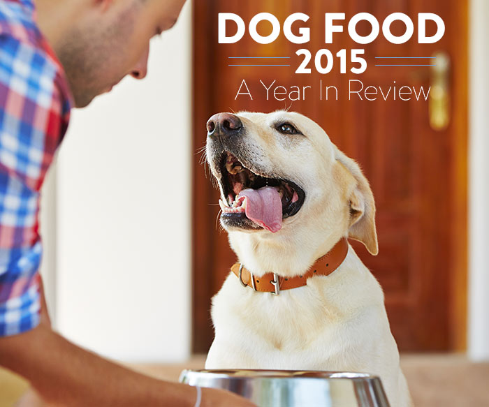 dog-food-in-review