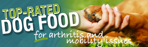 Best Dog Food For Dogs With Arthritis Joint Mobility Issues
