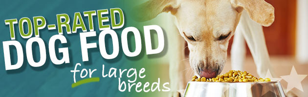 Best Dog Food For Large Breeds
