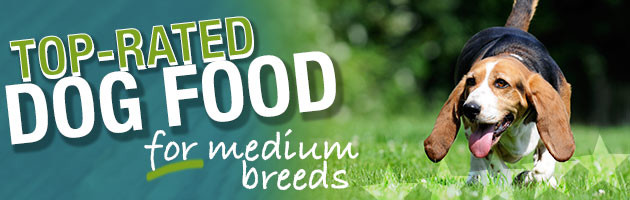 Best Dog Food For Medium Breeds