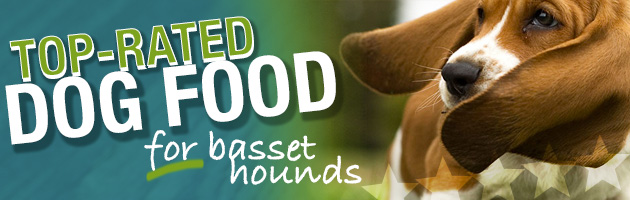 Best Dog Food For Basset Hounds | Feeding Buyer's Guide