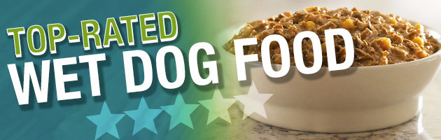 top rated canned dog food