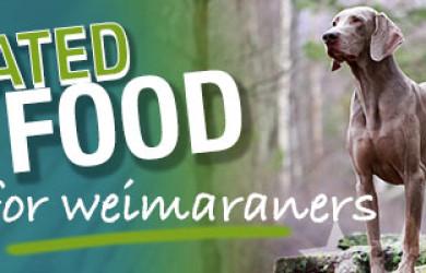 Best Dog Food For Weimaraners