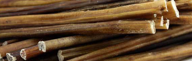 choosing the best bully sticks for your dog. Black Bedroom Furniture Sets. Home Design Ideas