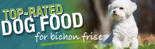 Best Dog Food For Bichon Frise