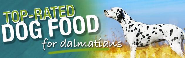 Best Dog Food for Dalmatians