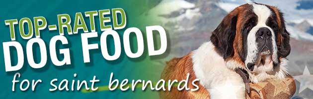Best Dog Food For Saint Bernards