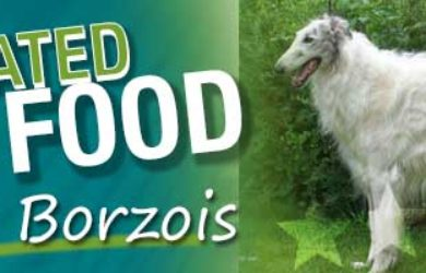 Best Dog Food Borzoi
