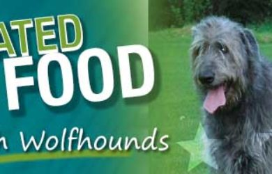 Irish Wolfhound Best Dog Food