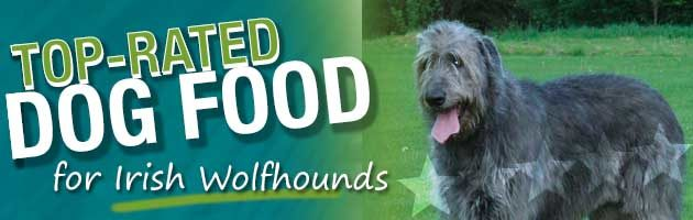 Irish Wolfhound Best Dog Food