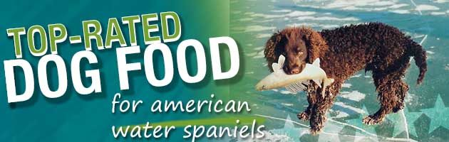 best dog food american water spaniel