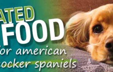 Best Dog Food American Cocker Spaniels
