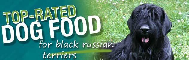 "I LOVE HEART MY BLACK RUSSIAN TERRIER DOG 4/"" STICKER"