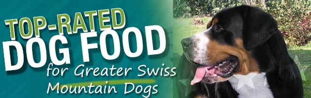 Best Dog Food Greater Swiss Mountain Dog