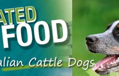 Best Dog Food Australian Cattle Dog