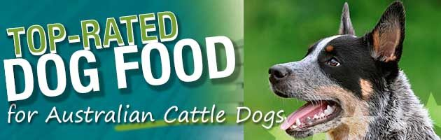 Best Dog Food Australian Cattle Dog