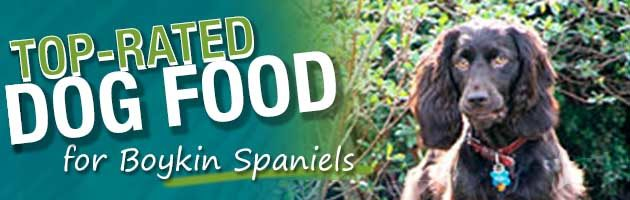 Best Dog Food Boykin Spaniel