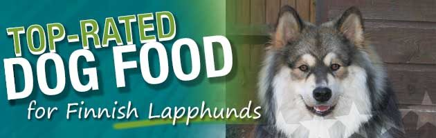 Best Dog Food Finnish Lapphund