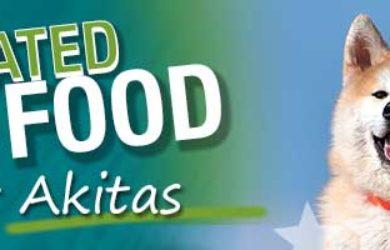 Best Dog Food Akita