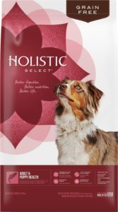 What Is The Best Dog Food for a Golden Retriever? | Holistic Select | Dogfood.guru