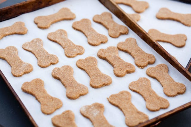 Homemade Dog Treats: Pumpkin Pie Dog Cookies | Tray of Dog Treats | Dogfood.guru