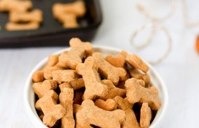 Homemade Pumpkin Pie Dog Cookies | Treats in a Bowl | Dogfood.guru