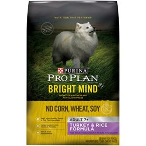 What Is The Best Dog Food for a Goldendoodle? | Purina Pro Plan Bright Mind | Dogfood.guru