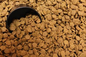 Toxins That Can Arise in Dry Dog Food | Whole Dog Journal | DogFood.Guru