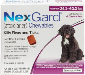 NexGard Soft Chew for Dogs, 24.1-60 lbs, (Purple Box) By NexGard